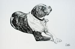 Jack's Pencil Portrait