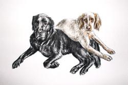 Bruce and Archie Watercolour Portrait