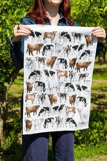 Cows 100% Cotton Tea Towel
