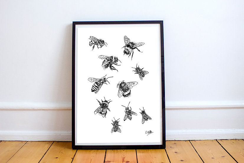 Hand Drawn Bee Print A4