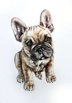 Nelly A3 Watercolour Portrait