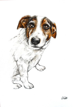 Becca's Watercolour Portrait