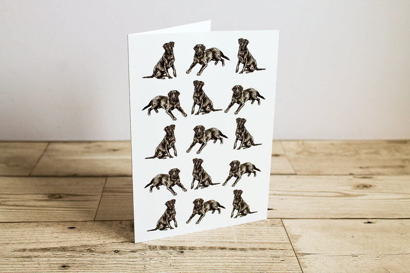 Black Labrador Greeting Card
