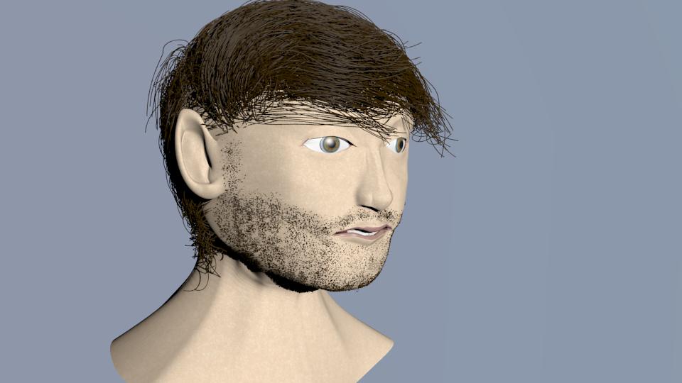 3D - HUMAN