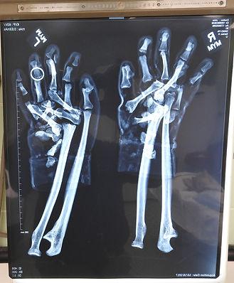 54-Hands w Ring_SA.jpg