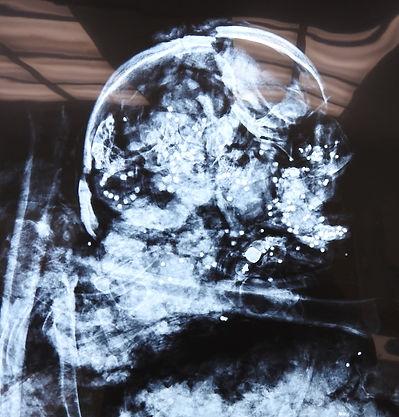 52-Skull w Bullets_SA.jpg