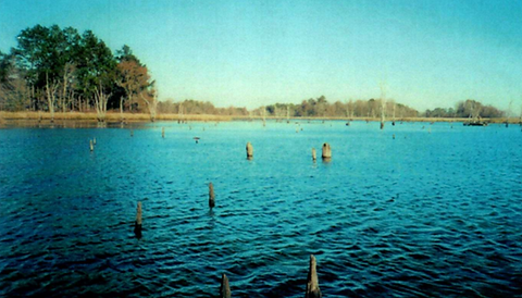 lake2.png