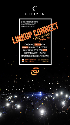 linkup party 2.png