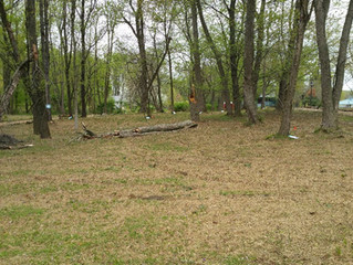 Update on the Natural Play Space