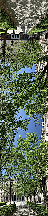 Photo panoramique verticale montrant la place de la Bourse et la rue de la République à Lyon, avec beaucoup d'arbres
