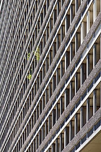 Des balcons des barres de Zumbrunnen sont ponctués par quelques petits végétaux. Photo immeuble graphique