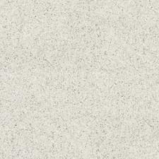 TZ6 White Star