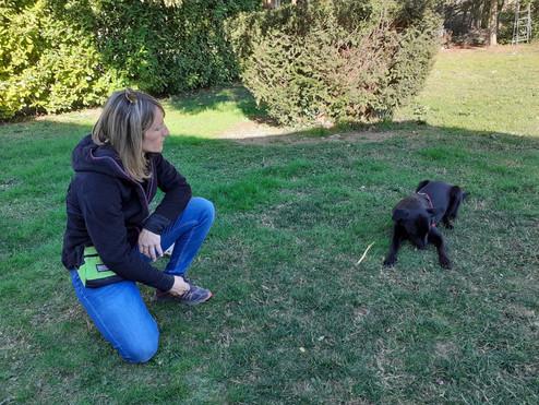 Education canin drôme Ardèche