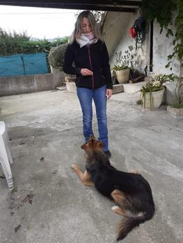 Education canine Drôme Ardèche