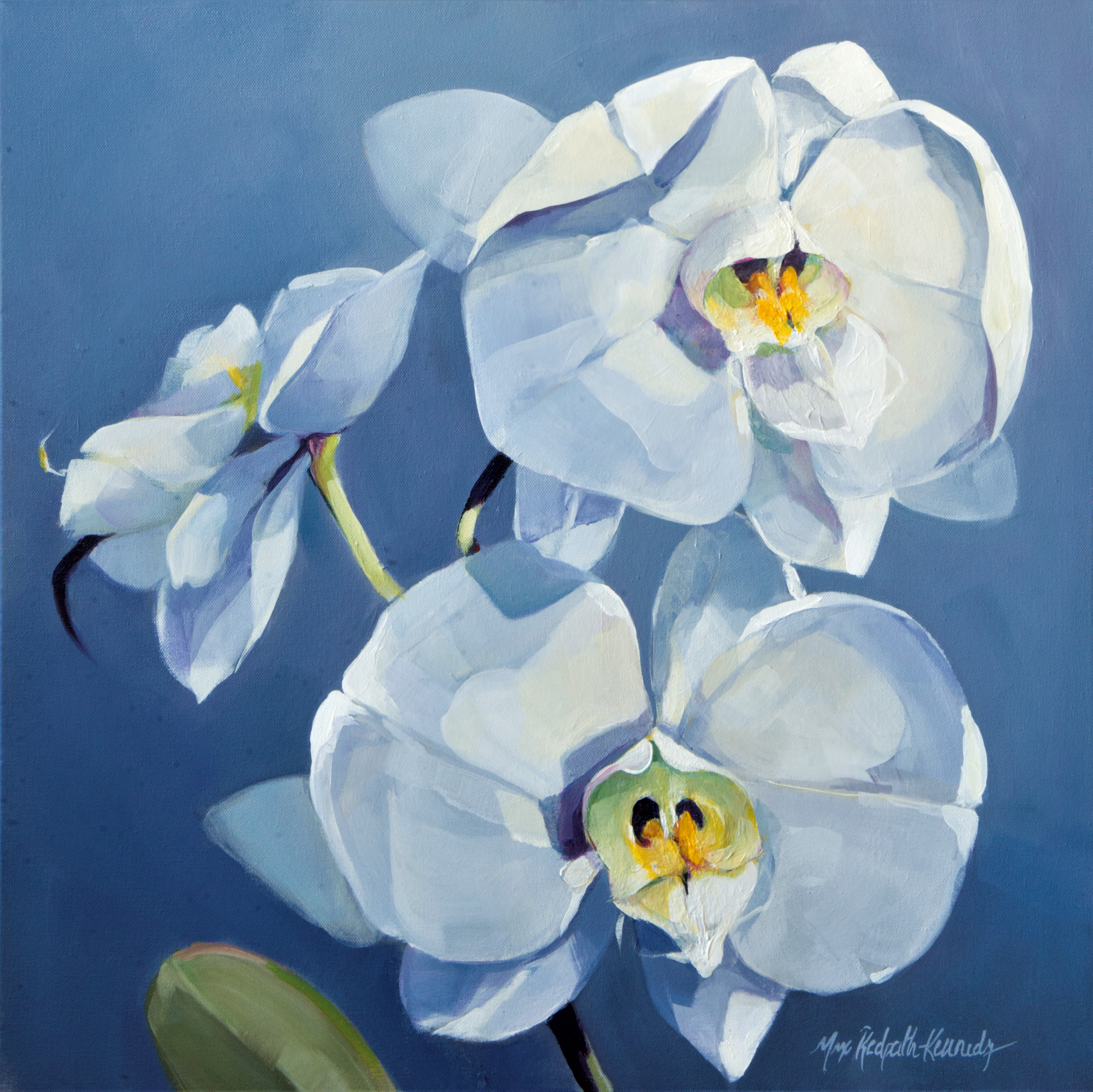 White Orchids on Periwinkle