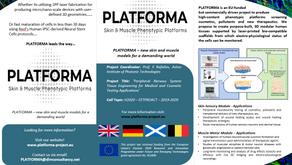 Platforma Pamphlet