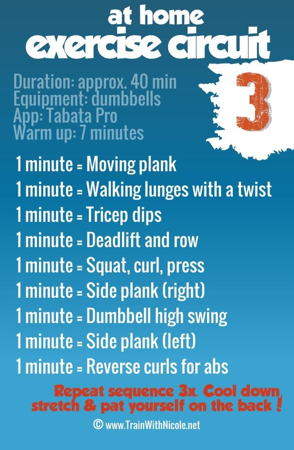 ExerciseCircuit3