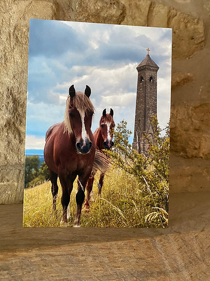 Horses - Nibley Monument
