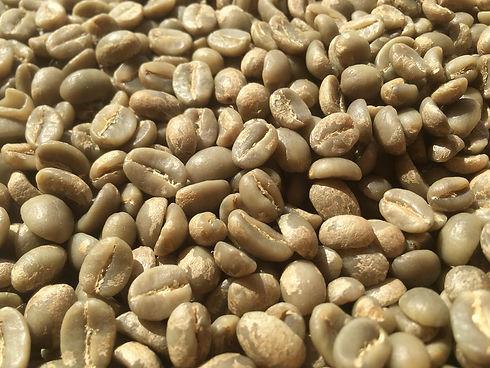 Fully washed Green Arabica Coffee Beans.jpeg