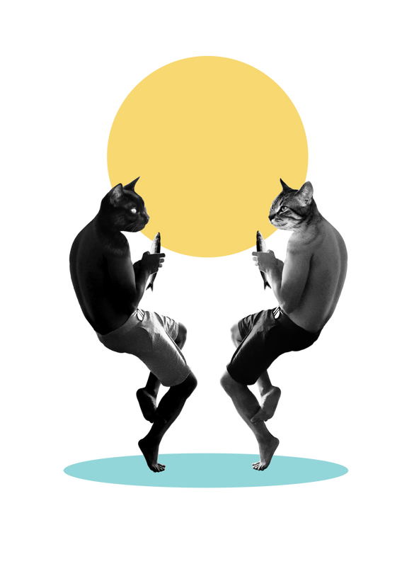 2018_06_Illustración_Cool_Cats_Collage