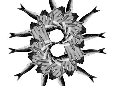 Mandala de Sardinas