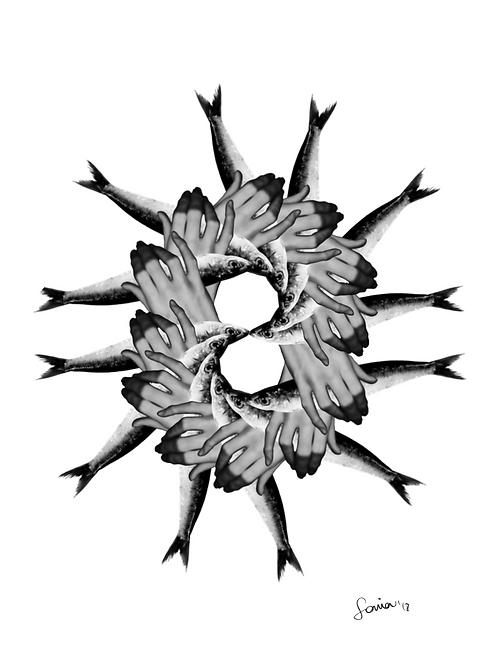 Ilustración Mandala Sardinas