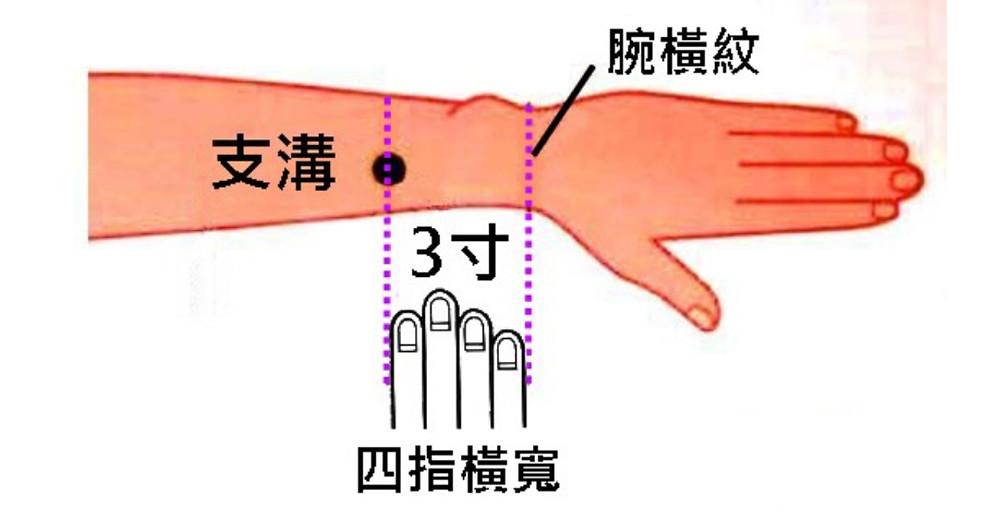位於手腕以下4根手指頭處