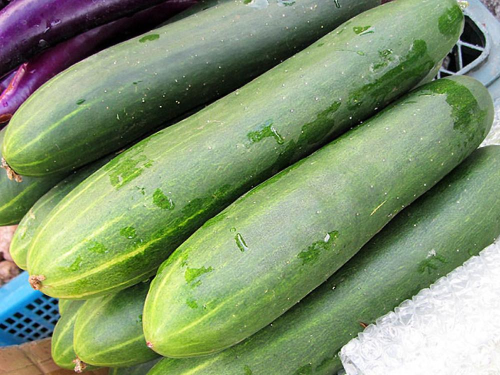 胡瓜健康效益: 抗菌﹑提升免疫力﹑體重控制