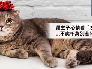 貓主子心情看「3表現」...不爽千萬別惹牠