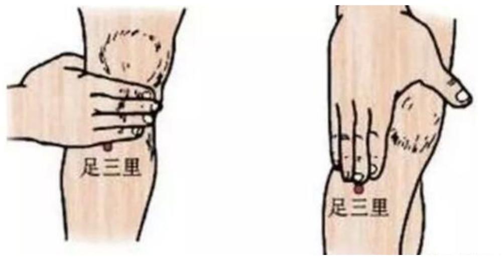 伸出手握住膝蓋,中指可達最遠的距離即為足三里穴道