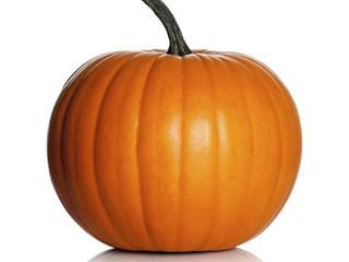 Hillary's Pumpkin Patch