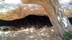The Fig Tree Cave Entrance