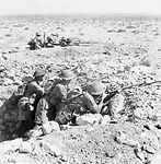 Rats on the Alert Tobruk 1941