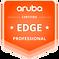 ARUBA-EDGE-BADGE_PROFESSIONAL_WEB_600x60