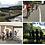 Thumbnail: サイクリング体験 やまなみサイクリング 尾道自由大学の複製