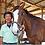 Thumbnail: 乗馬体験│引き馬コース│苅谷乗馬クラブ