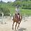 Thumbnail: 乗馬体験│走ってみようコース│苅谷乗馬クラブ