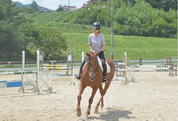 乗馬体験│走ってみようコース│苅谷乗馬クラブ