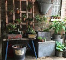 No.1 Kingsway, Tealby - gardenware
