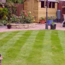 lawn-master-4.jpg