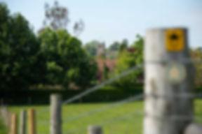 tealby-church-4.jpg