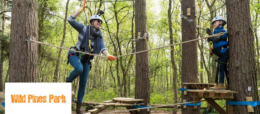 People enjoying the high-ropes at Wild Pines Park near Tealby