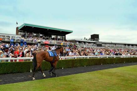 Market Rasen Racecourse - crowd
