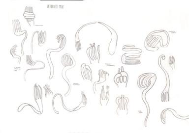 Planche fourchette - Ewan Loret.jpg