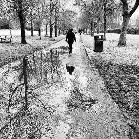 time for walk.jpg