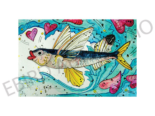 For the Love of Flying Fish