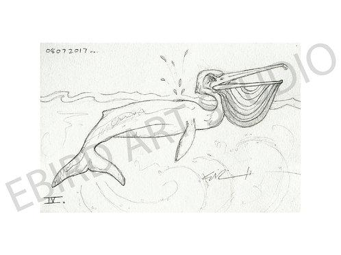 Pelican Whale