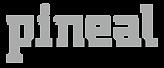 logo_pineal_0805.png