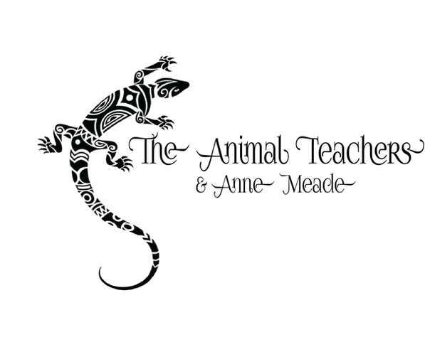The Animal Teachers logo (1).png