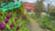 Swillburg Zoom Background.png